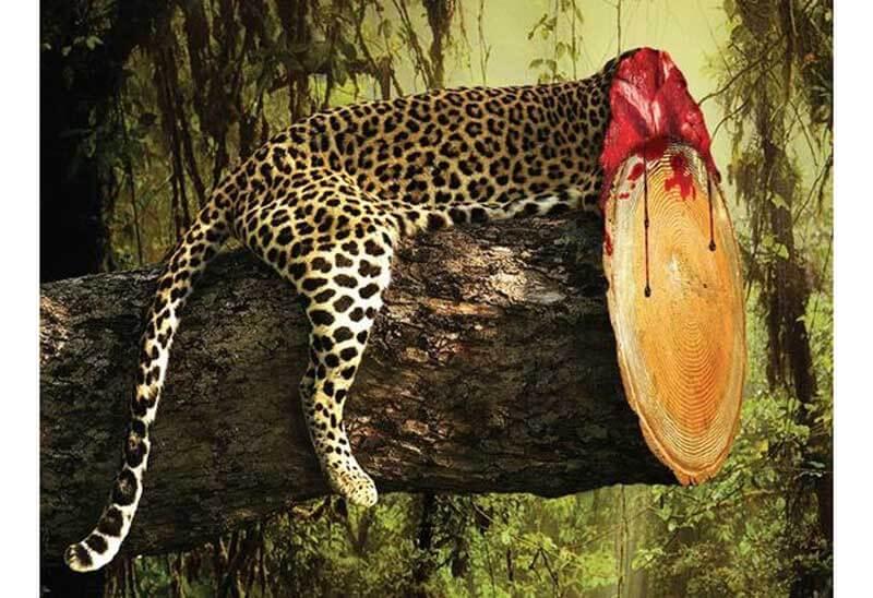 Unikkreatif 13 Contoh Poster Lingkungan Hidup Inspiratif Dan