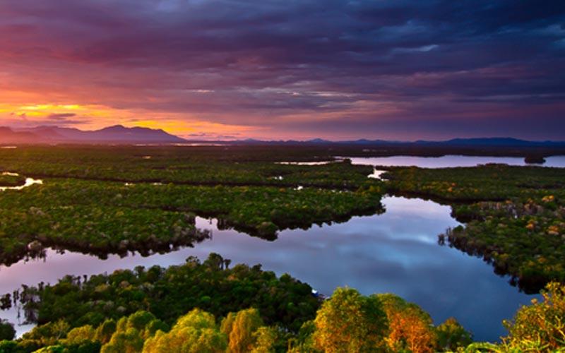 Syurga Flora dan Fauna Kalimantan, Taman Nasional Danau Sentarum Kalimantan Barat