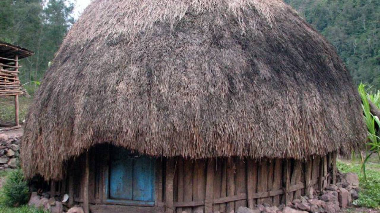 Daftar Terlengkap 5 Rumah Adat Papua Keunikan Gambar & Makna