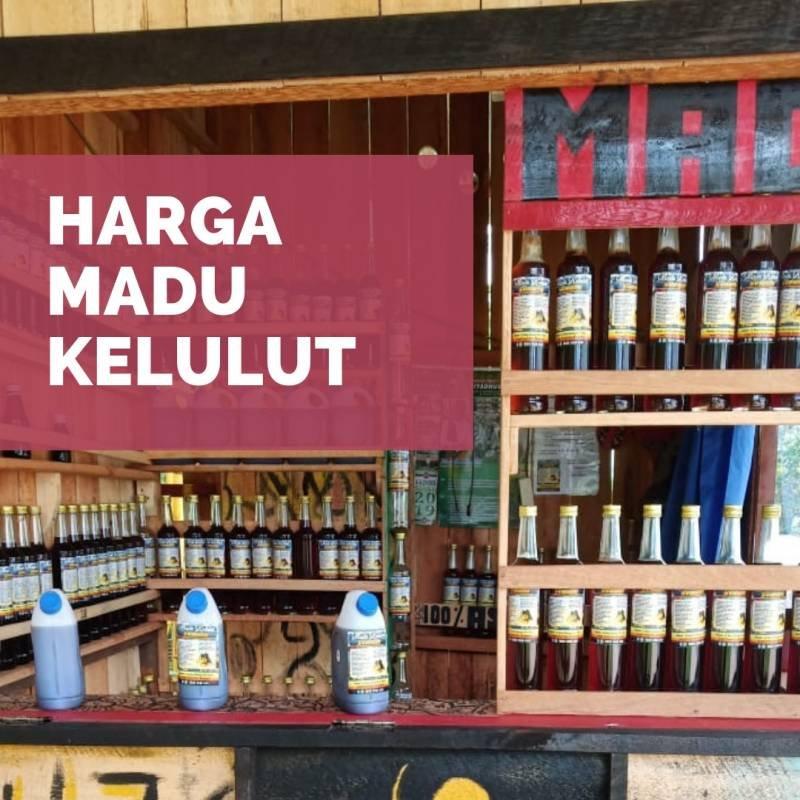 Harga Madu Kelulut/ Trigona/ Klaceng 2019