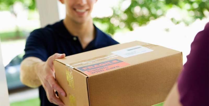 pengiriman bibit lele