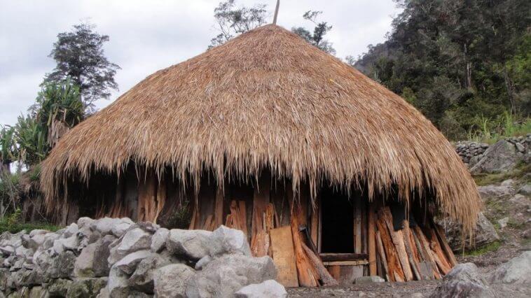 rumah tysem papua