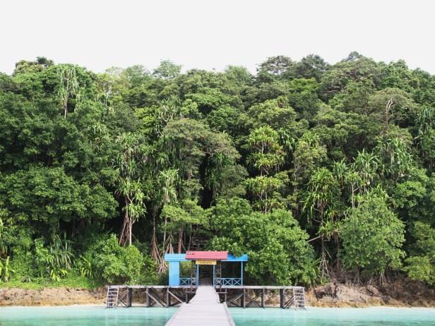 Pulau Kakaban IMG_2515.jpg