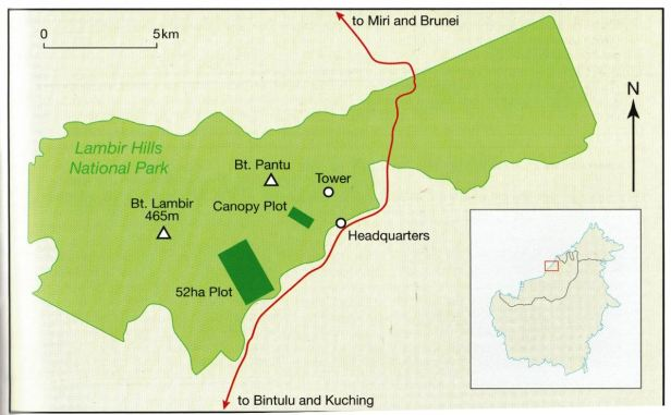 Lambir Hills Park Map