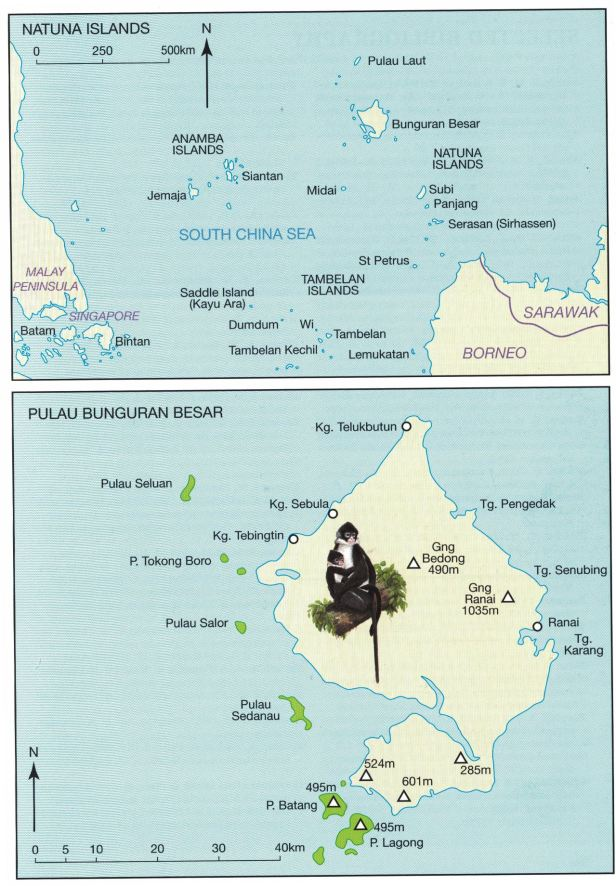 Natuna Islands.jpg