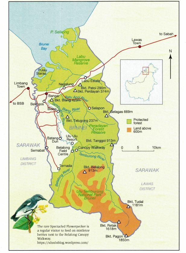 Temburong, Brunei MAP.jpg