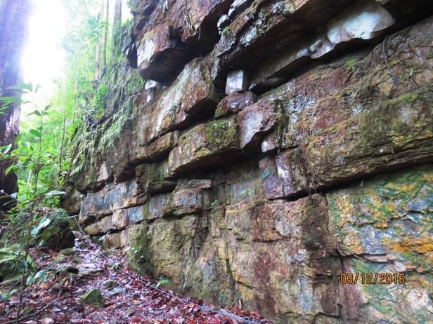 Bukit Patoi Sandstone Cliff IMG_3539 - Copy.JPG