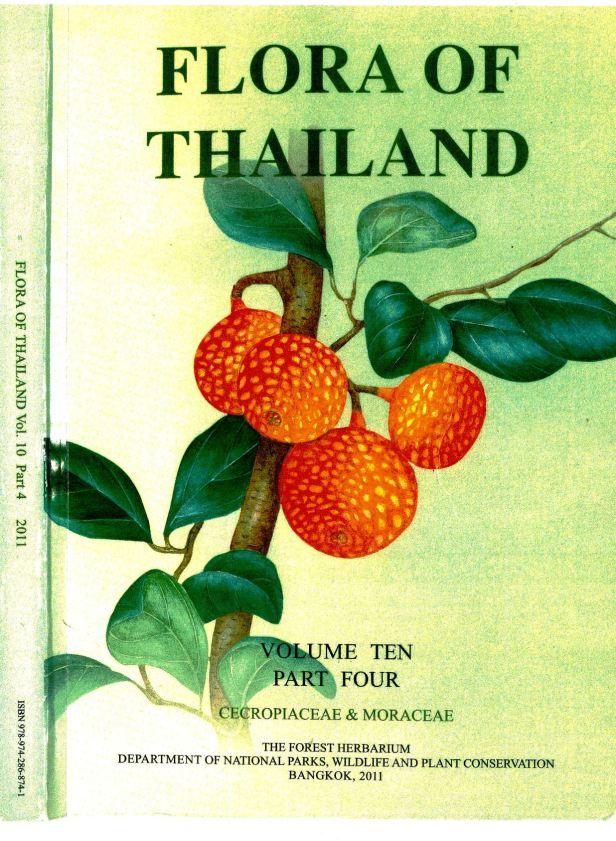 Berg et al (2011) Flora of Thailand Ficus -enhanced  .jpg