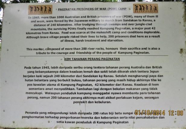 01 Ficus sumatrana Kg Paginatan IMG_0151.JPG