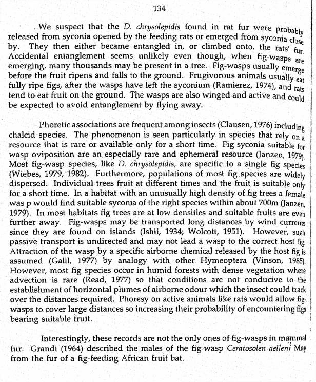134 Davis & Durden (1993).jpg