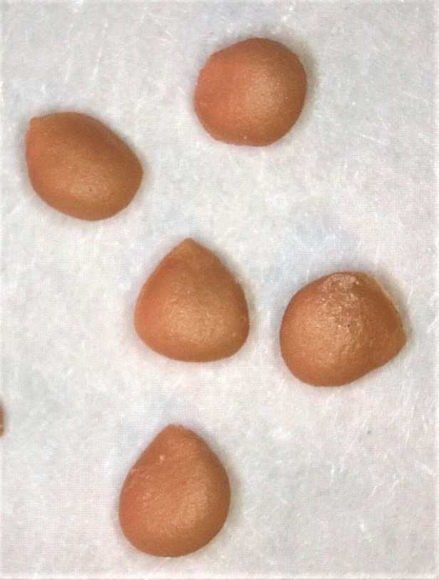 Fcus carica approx. 1.5 mm diameter.jpg