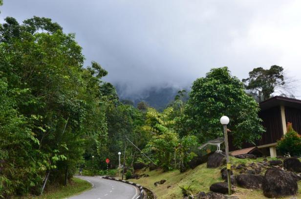 gunung-gading-national.jpg