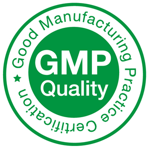 gmp-png-4