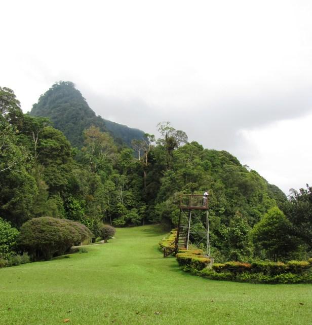 01 Borneo heights IMG_5731.jpg