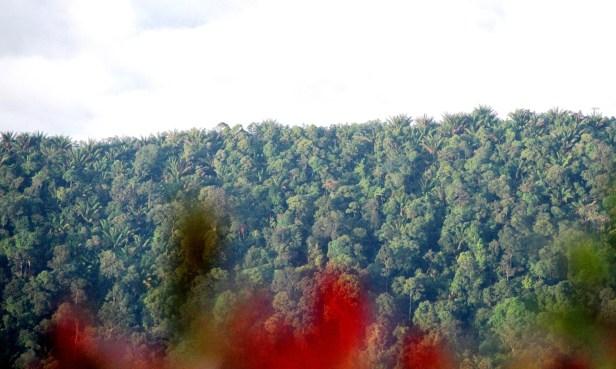 05 Gunung Penrissen IMG_4620.jpg