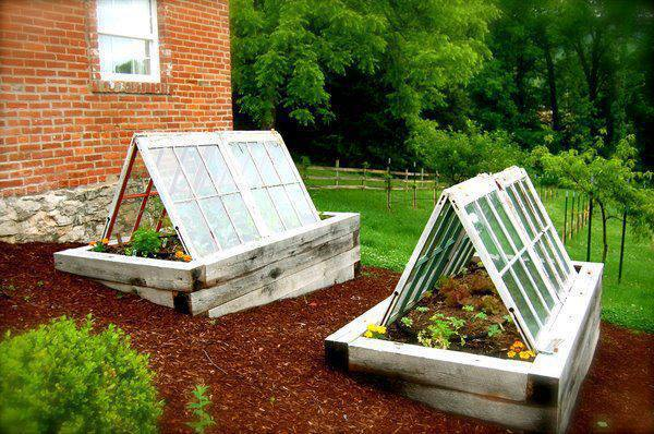 greenhouses-recycled-windows