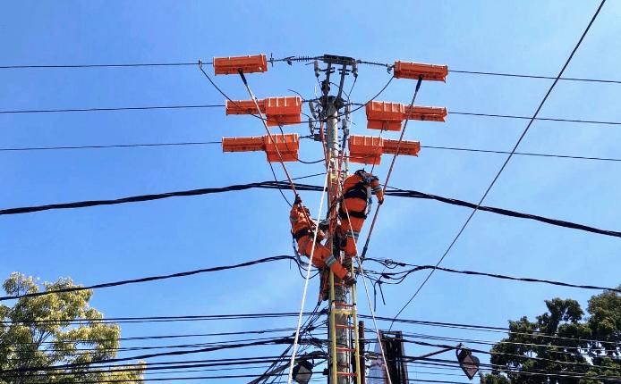 PELAYANAN: Petugas PLN melakukan pemeliharaan jaringan. (foto: ist)