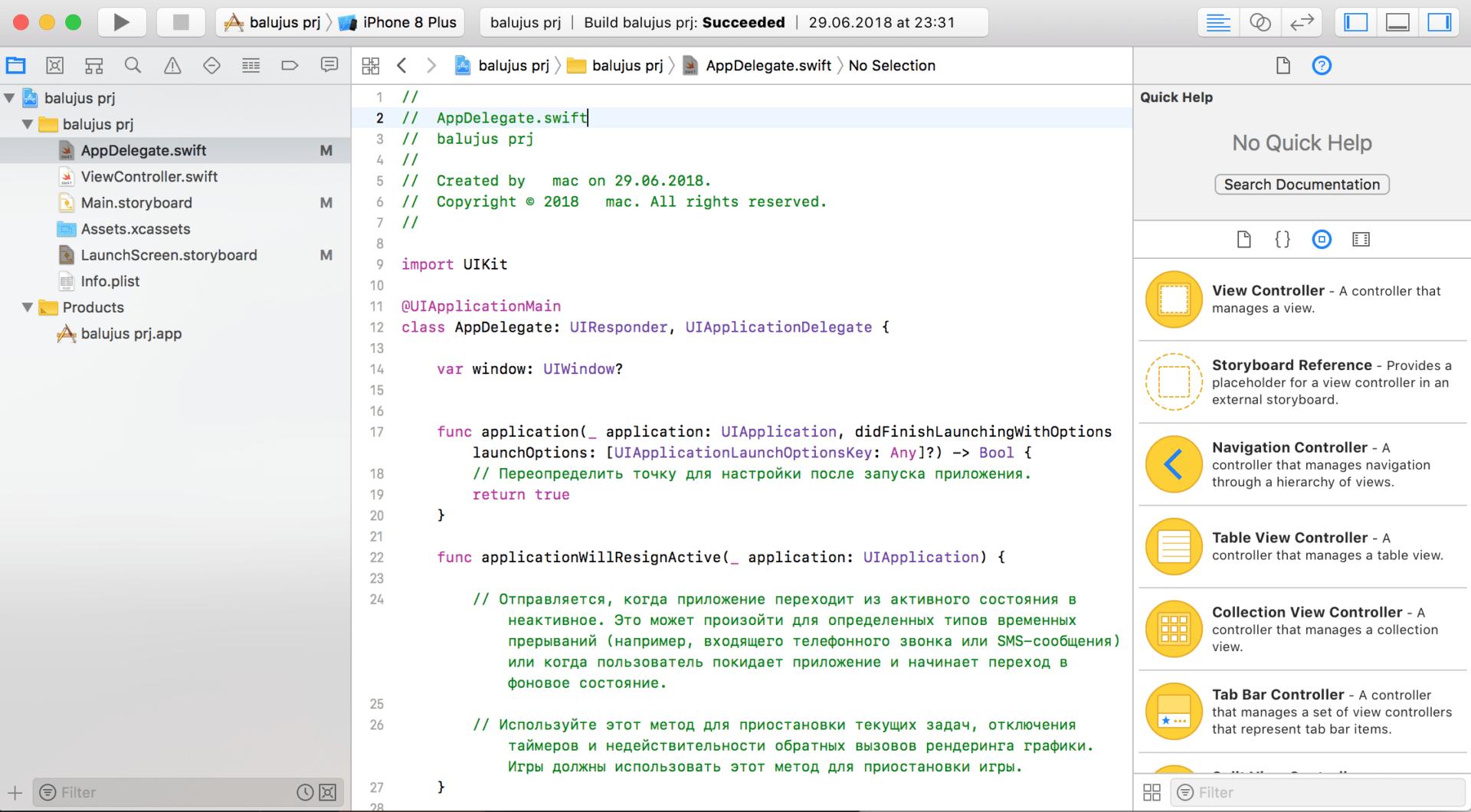 AppDelegate.swift - расшифровка файла