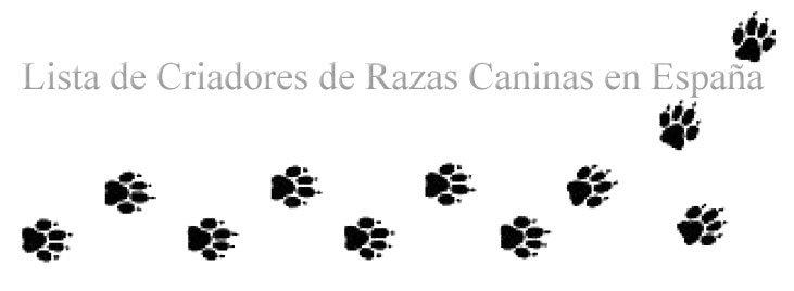 Criadores de Razas Caninas en España