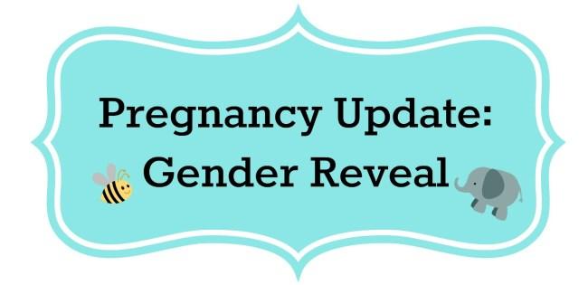 Pregnancy Update: Gender Reveal - BorrowedBlessings.net