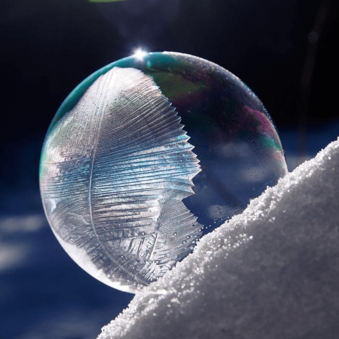 boble5_web