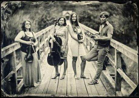 Corcoras quartet