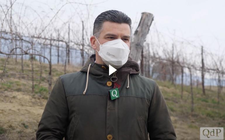 Video QdP: Alessandro Winkler il dentista vignaiolo tutore della rara Boschera
