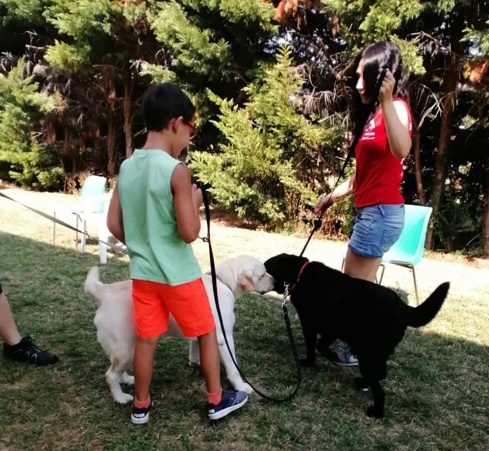 grooming e pet therapy presso il Cortile a Salsomaggiore Terme