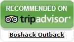 Boshack on Tripadvisor Australia