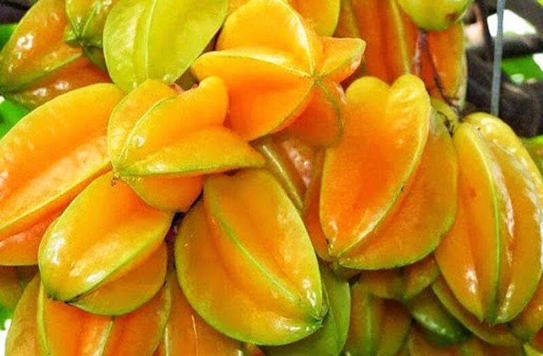 Makanan Khas Bojonegoro Belimbing Ngringinrejo