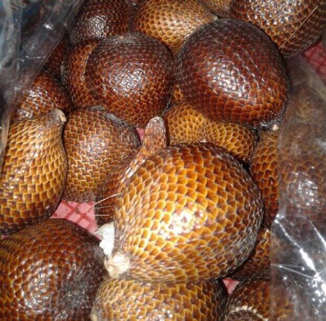makanan khas bojonegoro salak wedi