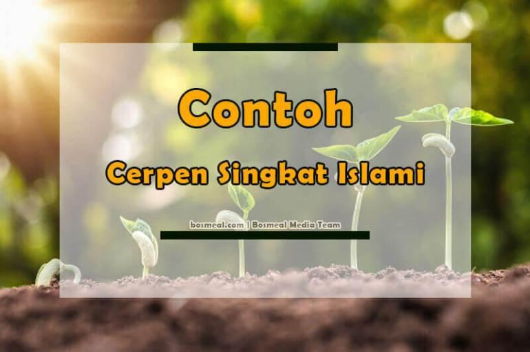 Contoh Cerpen Singkat Islami - Bosmeal.com