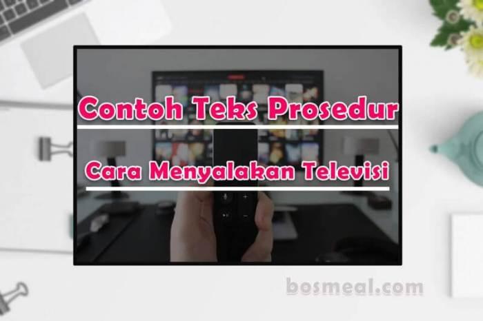 Contoh Teks Prosedur Sederhana Cara Menyalakan Televisi