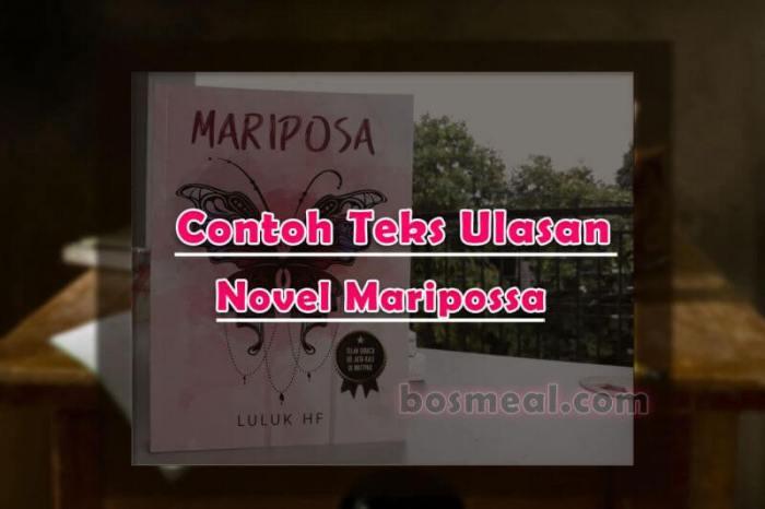 Contoh Teks Ulasan Novel Mariposa