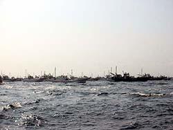 大貫沖の船団