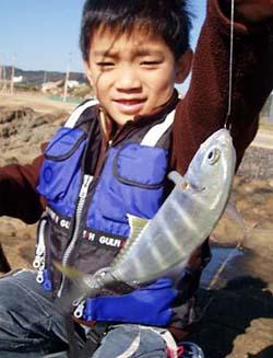 釣果ギンガメアジ(メッキ)