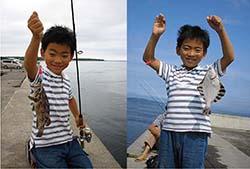 北海道岸壁釣り釣果 カレイメバル