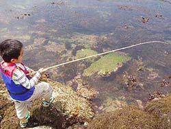 ゴロタ場の釣り