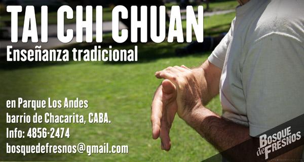 Clases de Taichi Chuan en Parque Los Andes, Chacarita, ciudad de Buenos Aires