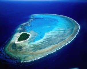 Lady Musgrave Island ... our first coral cay.