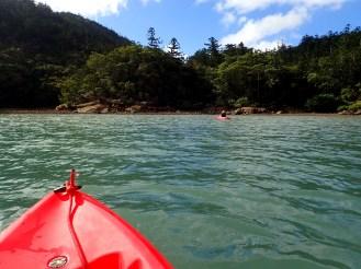 Kayaking in Nara Inlet. Stunning backdrop of hoop pines and rocks