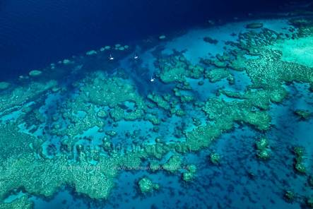 Bait Reef from the air (compliments from Google). The Stepping Stones are top left.