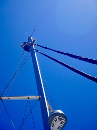 The mainsail halyard's outer core fell to bits. Needed rejigging on the top of the mast.