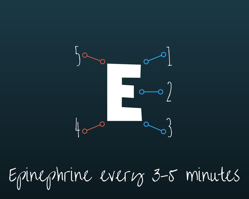 Epinephrine 3-5 VT post