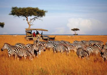 Family Tour of Kenya
