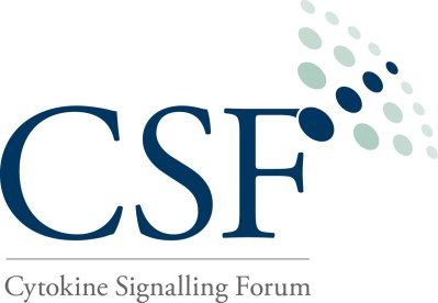 CSF blue logo