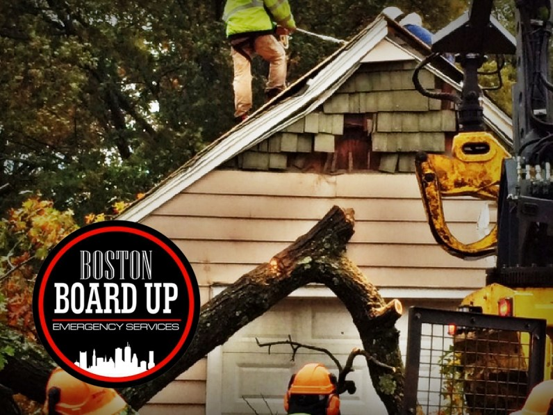 boston-board-up-emergency-services-tree-vs-structure-008