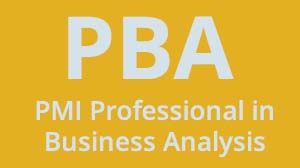 PBA - PMI - Professional in Business Analysis Certification and Exam Prep Training Course in Dubai