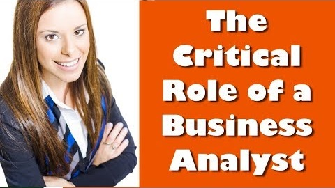 Business Analysis Training Video - Importance of the Business Analysts