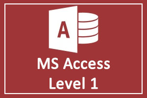 MS Access Training in Dubai